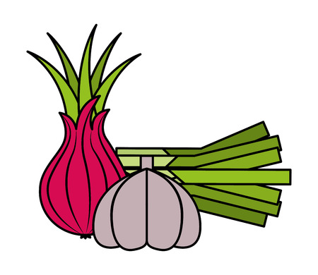onion garlic fresh vegetables food health vector illustration vector illustration