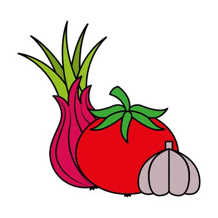 tomato garlic onion vegetables food health vector illustration vector illustration