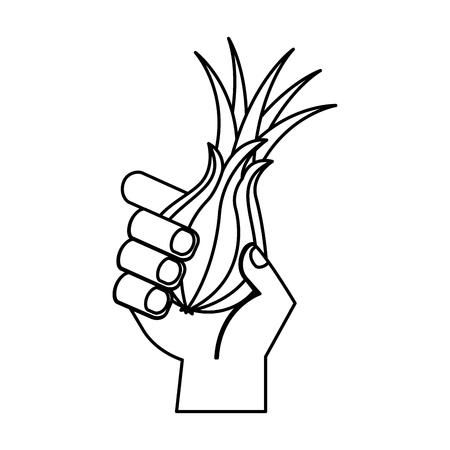 hand holding fresh onion vegetable vector illustration