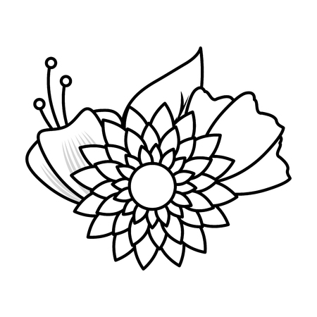 flowers leaves decoration on white background vector illustration Illustration