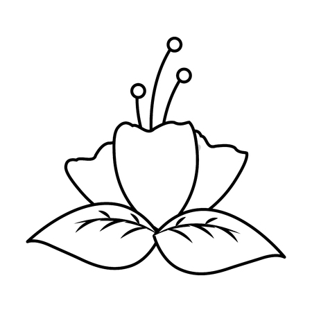 flowers leafes foliage on white background vector illustration