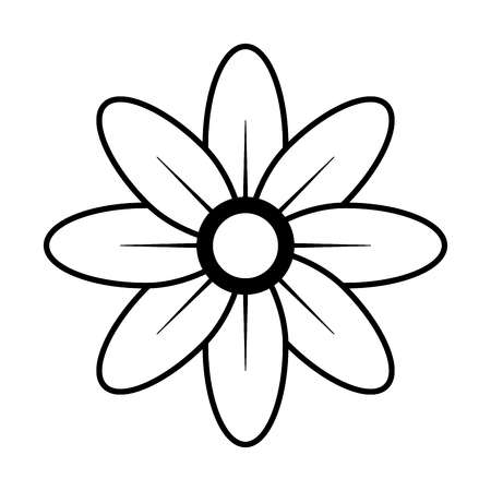 natural flower decoration on white background vector illustration