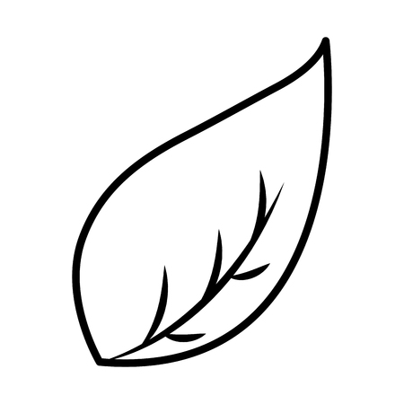 leaf foliage on white background vector illustration