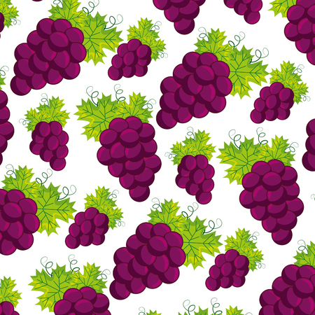 bunch fresh grapes on white background vector illustration Illusztráció