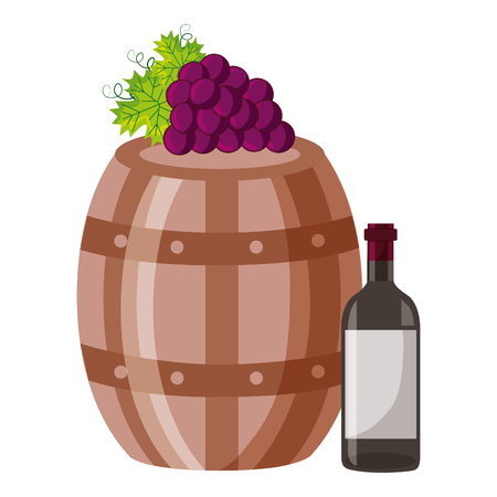wine bottle wooden barrel grapes vector illustration