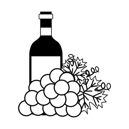 wine bottle bunch fresh grapes vector illustration Ilustração