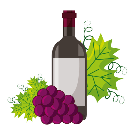 wine bottle bunch fresh grapes vector illustration Illustration