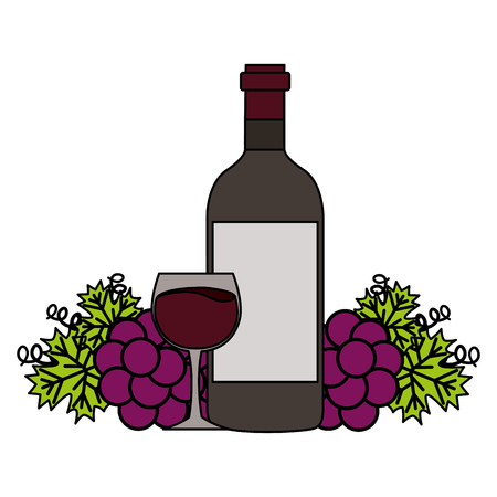 wine bottle cup and fresh grapes vector illustration