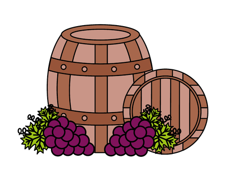 wooden barrels bunch fresh grapes vector illustration