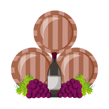 wine wooden barrels bottle and grapes vector illustration