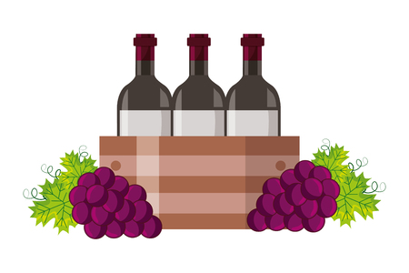 wine bottles on basket and grapes vector illustration