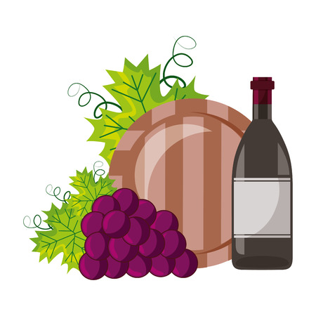 wine bottle grapes and barrel vector illustration