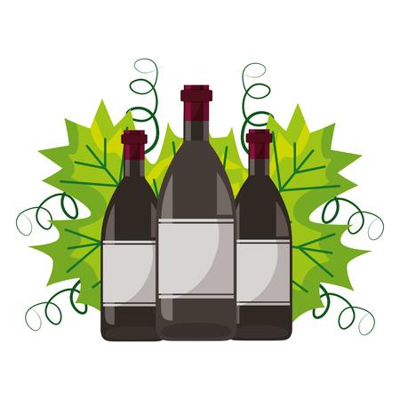 wine bottles leaves on white background vector illustration