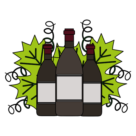 wine bottles leaves on white background vector illustration