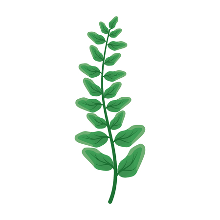 green branch leaves on white background vector illustration Illusztráció
