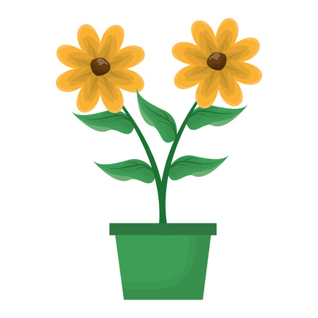 potted flowers decoration on white background vector illustration