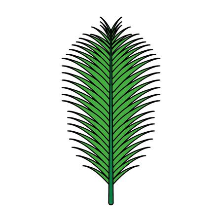 green palm leaf on white background vector illustration Illustration