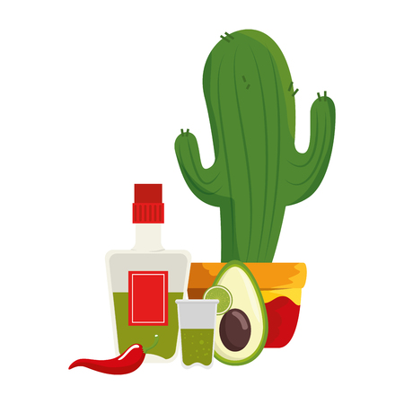 mexican cactus with tequila and vegetables vector illustration design