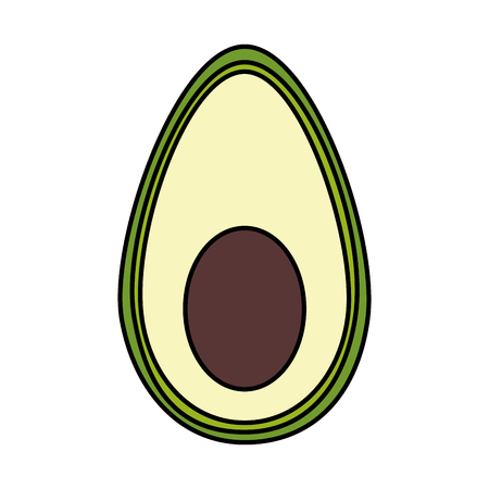 half avocado isolated icon vector illustration design 向量圖像