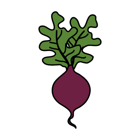 fresh eggplant vegetable icon vector illustration design Vettoriali