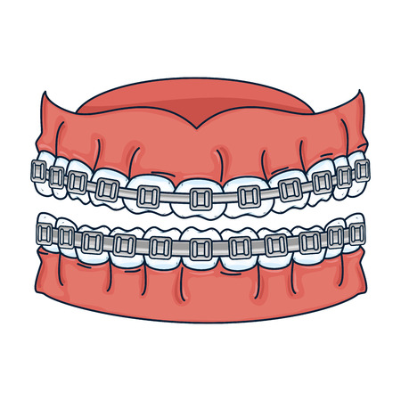 human teeth with orthodontics vector illustration design Illustration