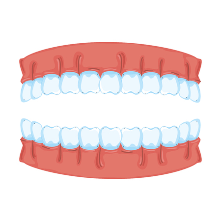 human teeth isolated icon vector illustration design Stock fotó - 116141588