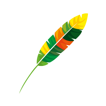 feather exotic colors icon vector illustration design Иллюстрация