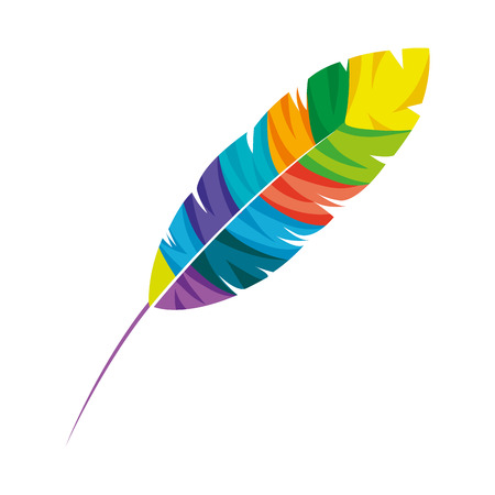 feather exotic colors icon vector illustration design Illustration