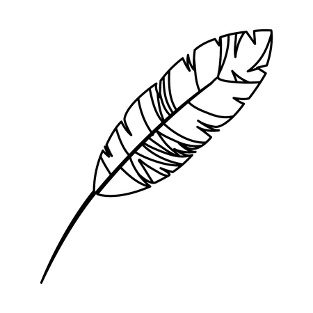feather exotic isolated icon vector illustration design