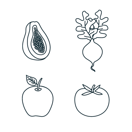 group of fruits and vegetables vector illustration design Çizim