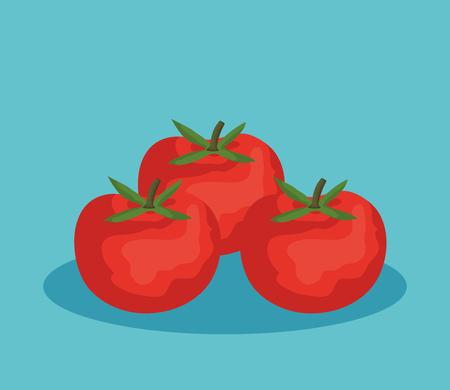 fresh tomatoes vegetables icon vector illustration design Illustration