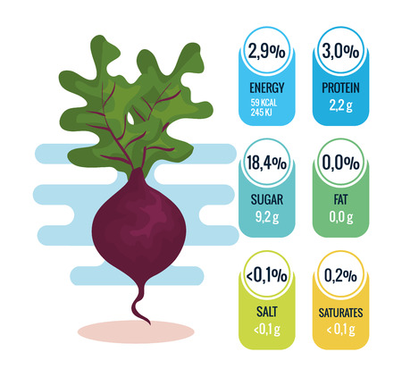 fresh eggplant with nutrition facts vector illustration design Çizim