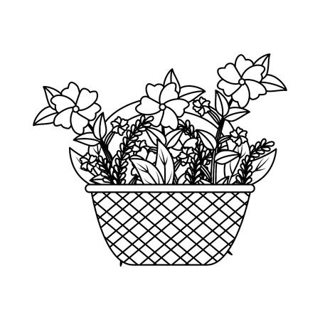 cute basket straw with floral decoration vector illustration design