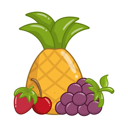 pineapple grape and cherry strawberry vector illustration Çizim