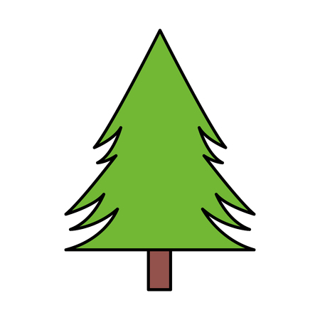 tree pine forest on white background vector illustration Иллюстрация