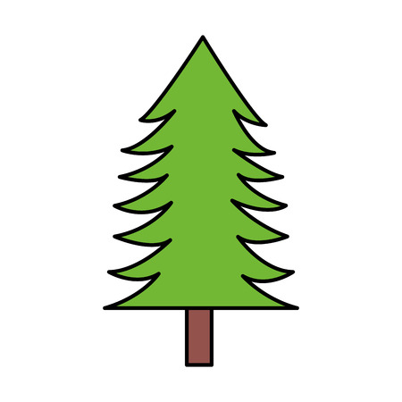 tree pine forest on white background vector illustration Illusztráció