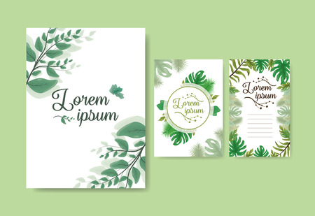 foliage nature leaves cards decoration vector illustration