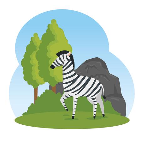 cute zebra wild animal reserve vector illustration