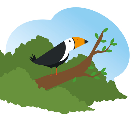 cute bird wild animal reserve vector illustration