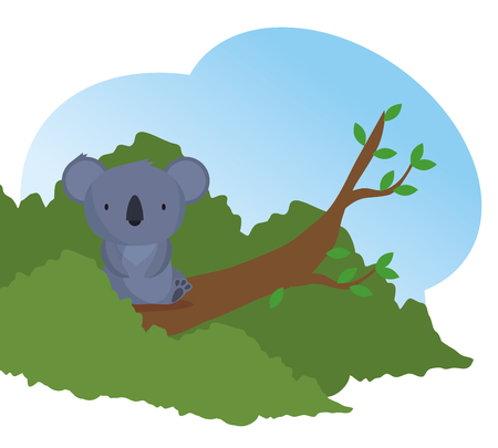 koala wild animal in the tree branch vector illustration