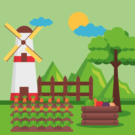 mill vegetables carrots planting farm fresh vector illustration