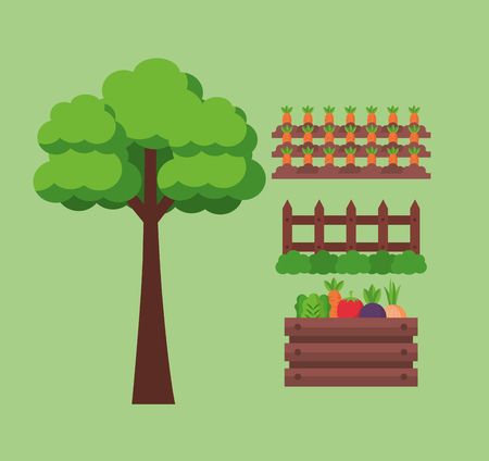 tree vegetables fence and carrot planting farm fresh vector illustration Illustration