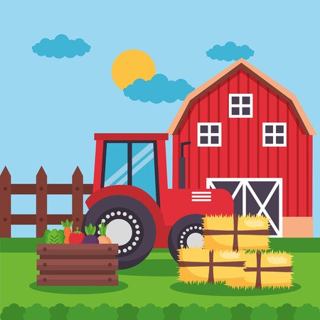 barn tractor vegetables and bales of hay farm fresh cartoon vector illustration