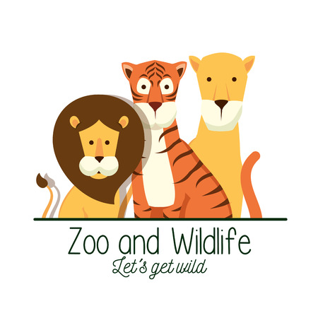 lion with tiger and lion in the safari reserve vector illustration Illustration
