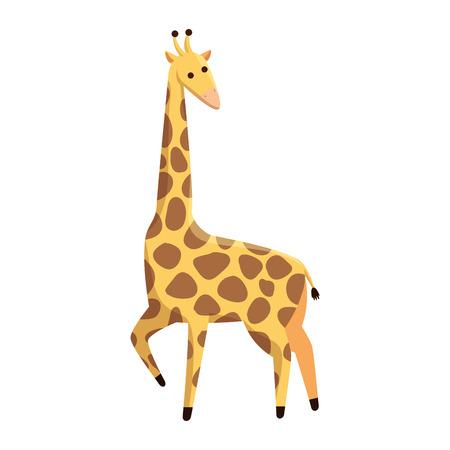african giraffe wildlife animal vector illustration design
