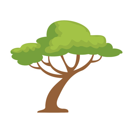 tree forest isolated icon vector illustration design