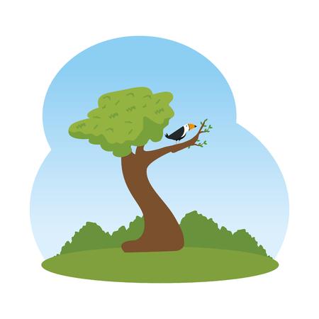 toucan bird in tree landscape scene vector illustration design