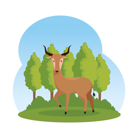 african antelope in the savannah character vector illustration design