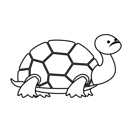 cute turtle wild character vector illustration design Illustration