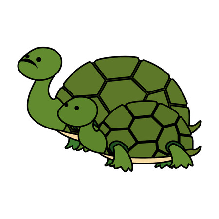 cute family turtles wild characters vector illustration design Ilustração